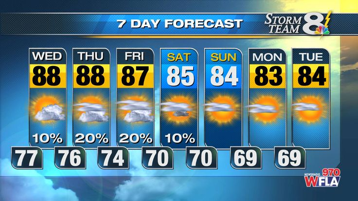 channel 28 abc tampa bay area weather page bay news 9 tampa
