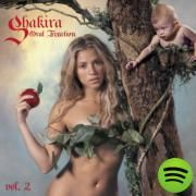 Hips Don't Lie, a song by Shakira, Wyclef Jean on Spotify