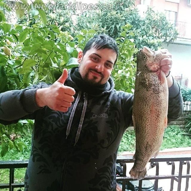 Lago le mole Vecchie: Trota salmonata con catana shimano DX210 pesca fishing