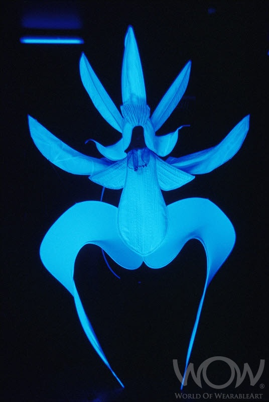 GHOST ORCHID, Ruth Carlile, New Zealand. CentrePort Illumination Illusion Section. 2005 Brancott Estate WOW Awards Show