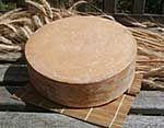 Making a Beaufort Alpine Style Cheese Recipie