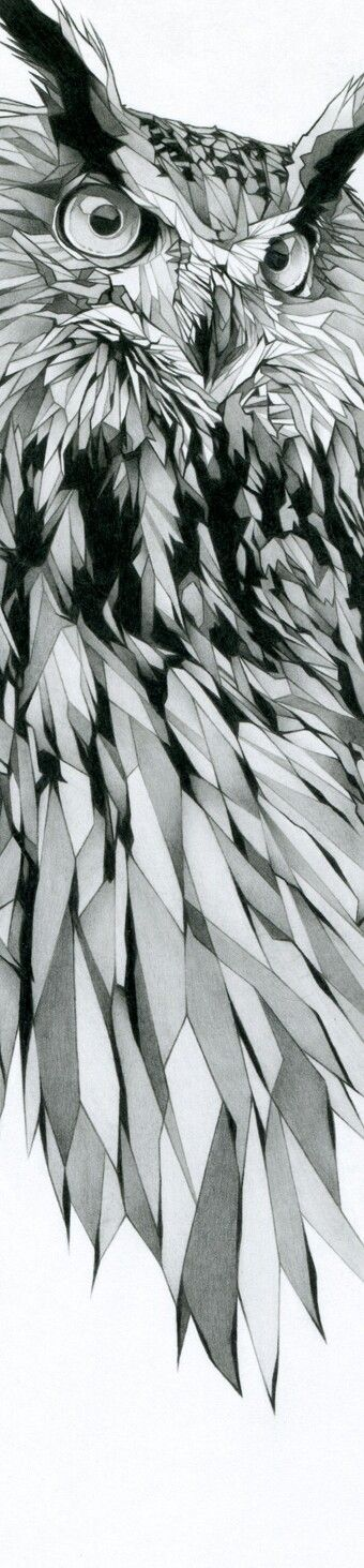 IllustrationWeston-super-mare  No color, but has similar geometry to the crystal. Gives the owl a lot of texture.