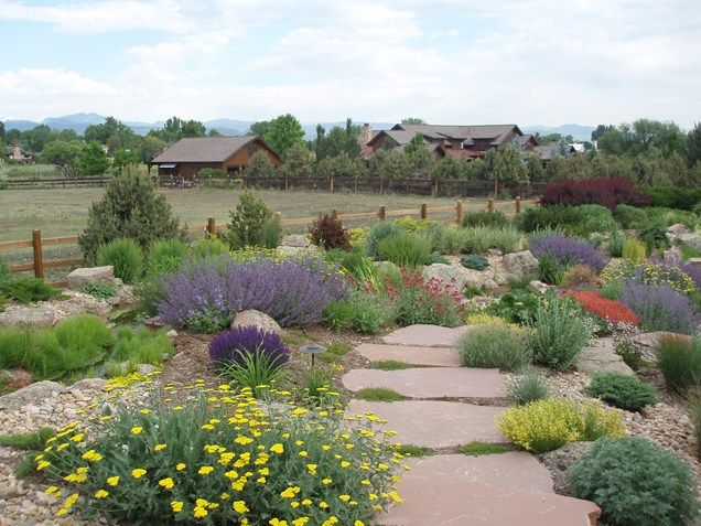 Xeriscaping with large flat flagstones set closely for Large bushes for landscaping
