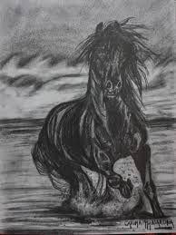 Resultado de imagen para dibujos de caballos salvajes a lapiz