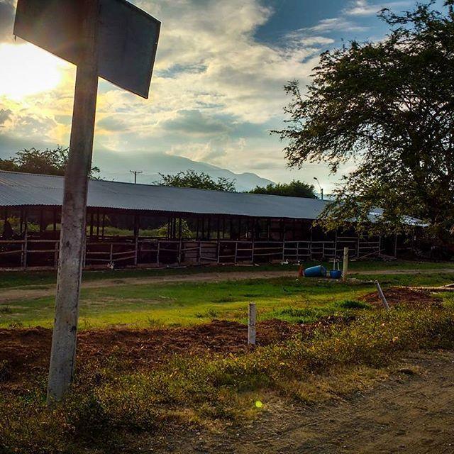 Despertar sin recordar como llegué a este lugar, ya no es... normal... #paisajes #sky #sun #summer #sol #nature #azul #photography #skylovers #cielo #nubesdealgodon #CO #colombia #photoart #lightroom #love #lifestyle
