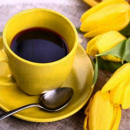 Que tal um café