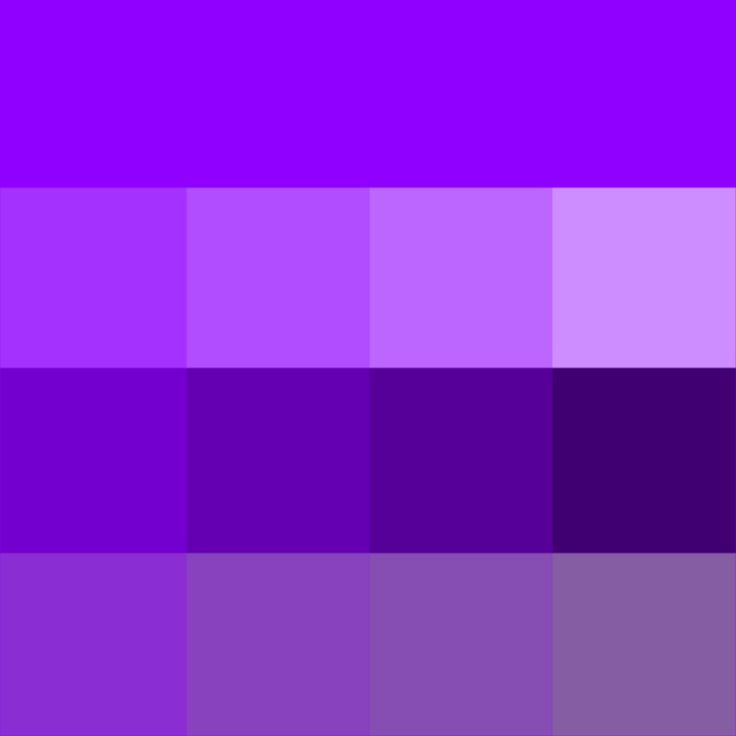 Violet Web Hue Tints Shades Tones Hue Pure Color