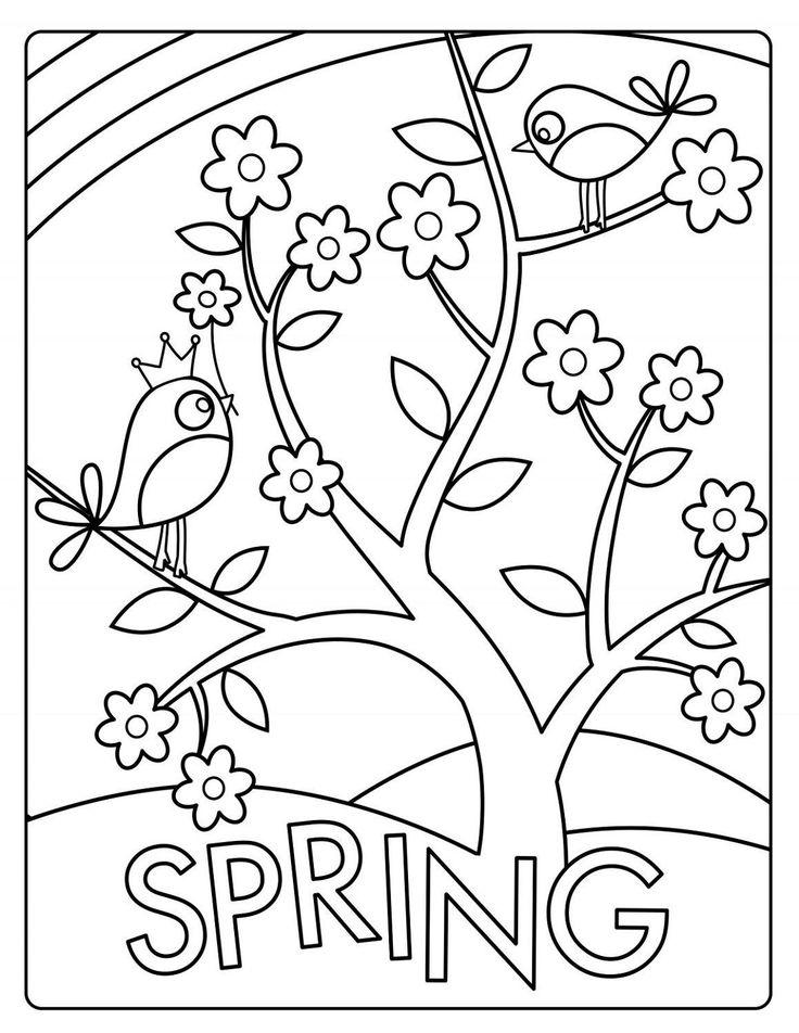 frühling ausmalbilder  spring coloring sheets bird