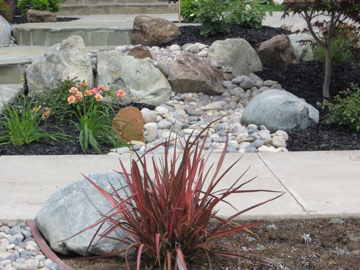 15 best images about dry creek bed on pinterest a well for Low water landscaping