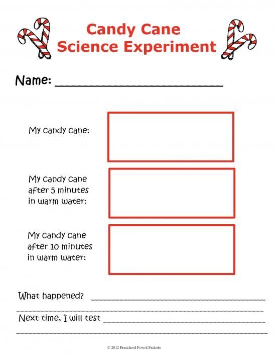 How to Write Up a Science Experiment Report