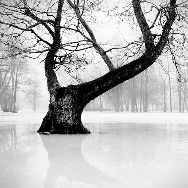 "Saatchi Art Artist Andrey Kulpin; Photography, ""Reflection"" #art"