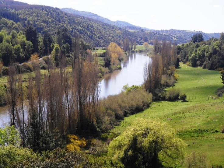 orillas del rio bio bio