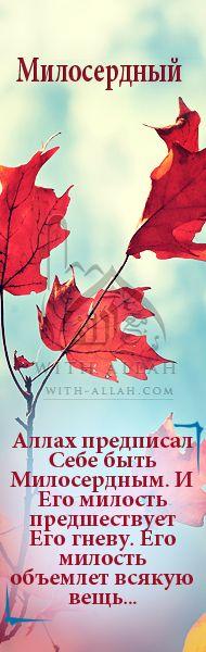 Жизнь с Аллахом, Свят Он, Его именами и атрибутами