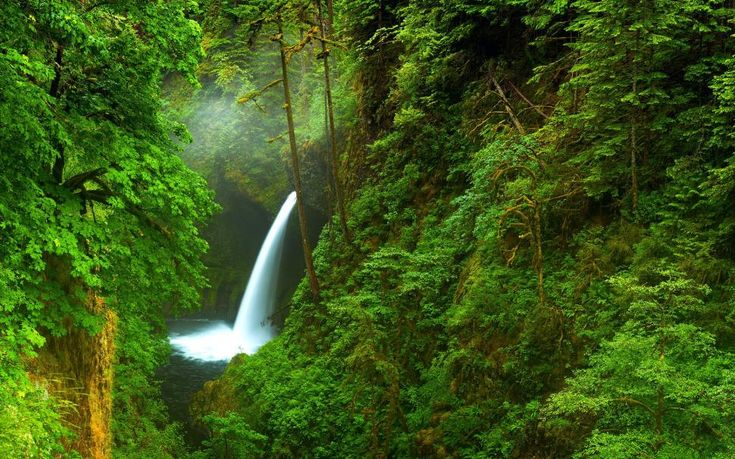 USA, Oregon, waterfall wallpaper | nature and landscape ...