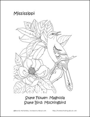 13 best State Coloring Pages images on Pinterest Coloring pages