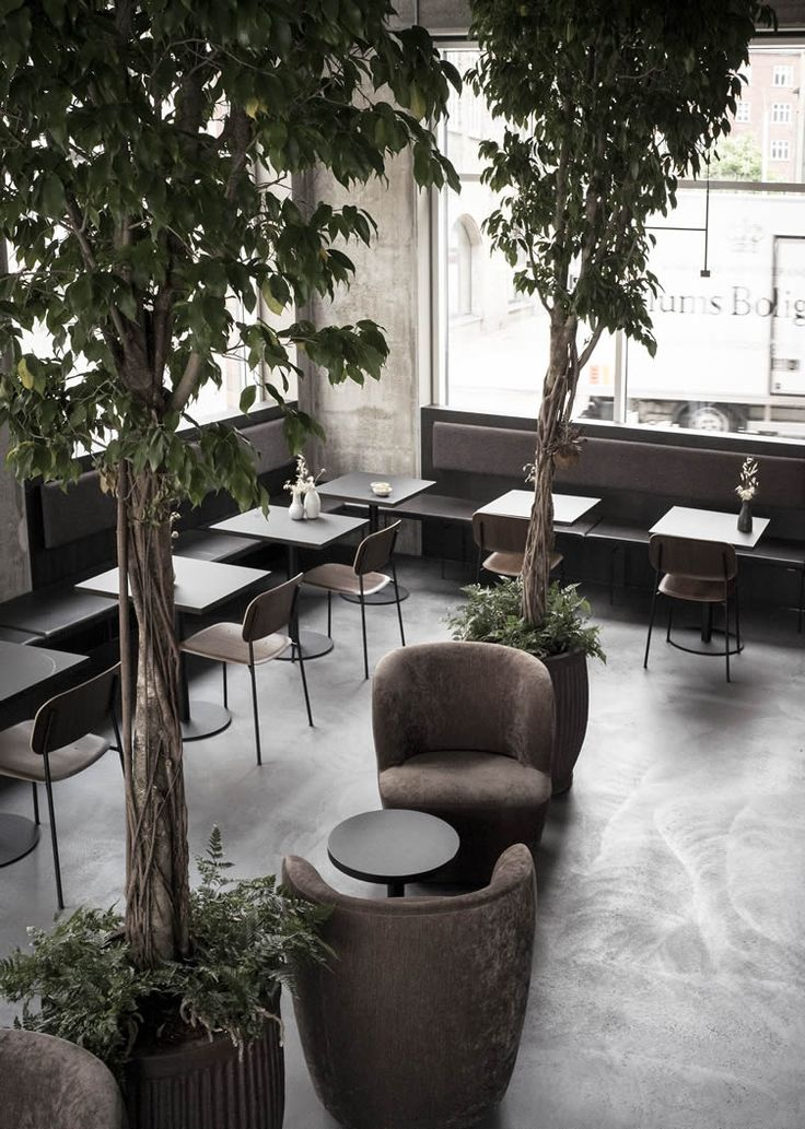 Customer Care: Copenhagen's intimate wine bar and restaurant, Nærvær, is putting its locals first...