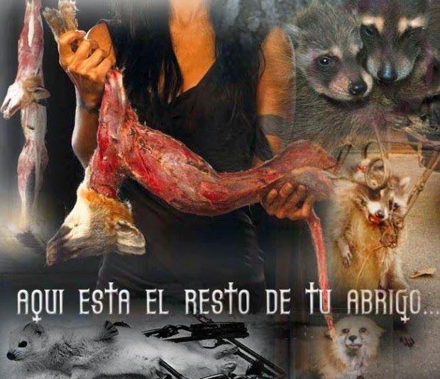 SandRamirez contra el maltrato animal. • www.luchandoporellos.es: RECOGIDA DE FIRMAS PARA VIVIENNE WESTWOOD.