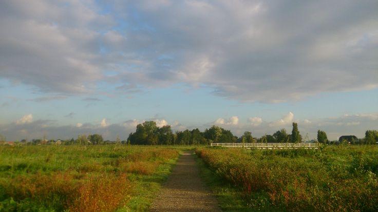 Het nieuwe wandel gebied  achter de begraafplaats