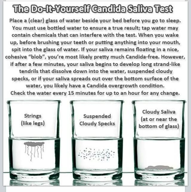 Candida Spit Test!  Message me with results at @thedustypage on FB. http://dustyrodgers.myplexusproducts.com . Ambassador # 342126