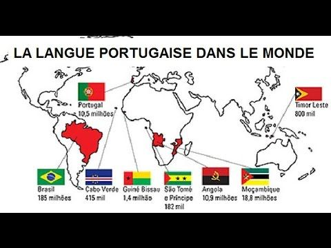 dictionnaire francais portugais francais