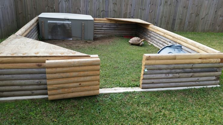 Outdoor 10x12 tortoise habitat