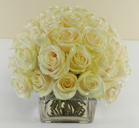 Butter yellow roses
