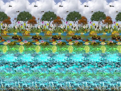 The Best Stereogram Pictures Ever | Eye Ball 2 - 3d Stereograms App - Eye Ball 2 - 3d Stereograms for iPad ...