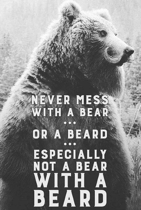Never Mess With A Bear Or Beard Especially Not A Bear With A Beard Memes