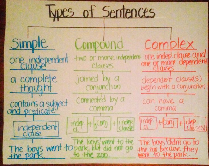 Types of Sentences (simple,compound,complex) using Tree Map (thinking map)