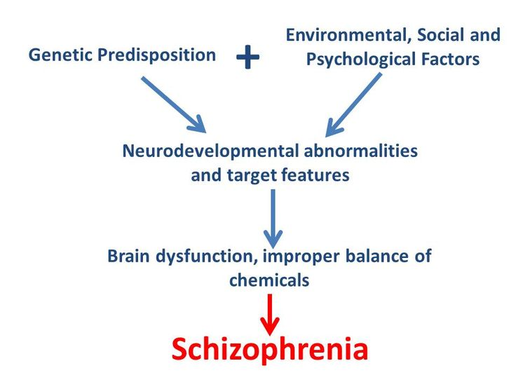 Getting to understand the psychopathology of schizophrenia in other words it is also referred as the physiological process that takes place abnormally in schizophrenics. Visit the Healthylivingarchive and learn more on the psychopathology of schizophrenia.