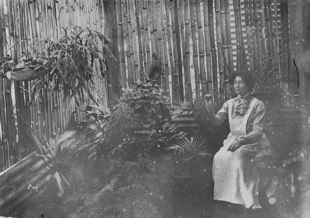 Florence Reid in the bush house at Balnagowan Station by State Library of Queensland, Australia, via Flickr