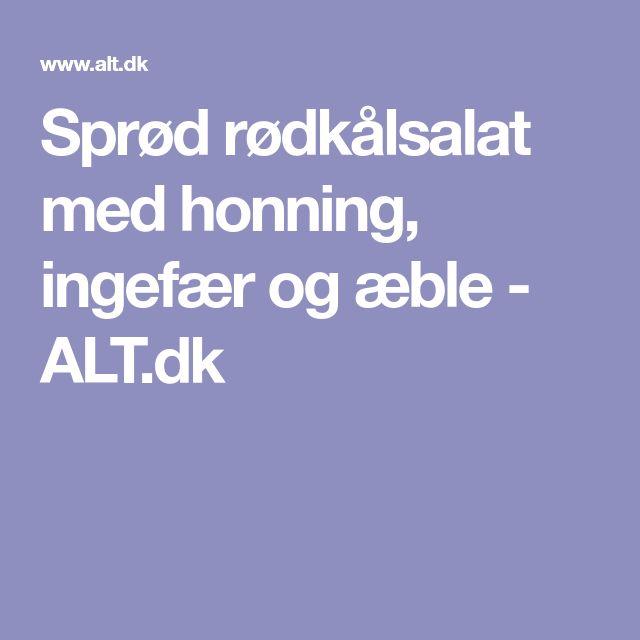 Sprød rødkålsalat med honning, ingefær og æble - ALT.dk