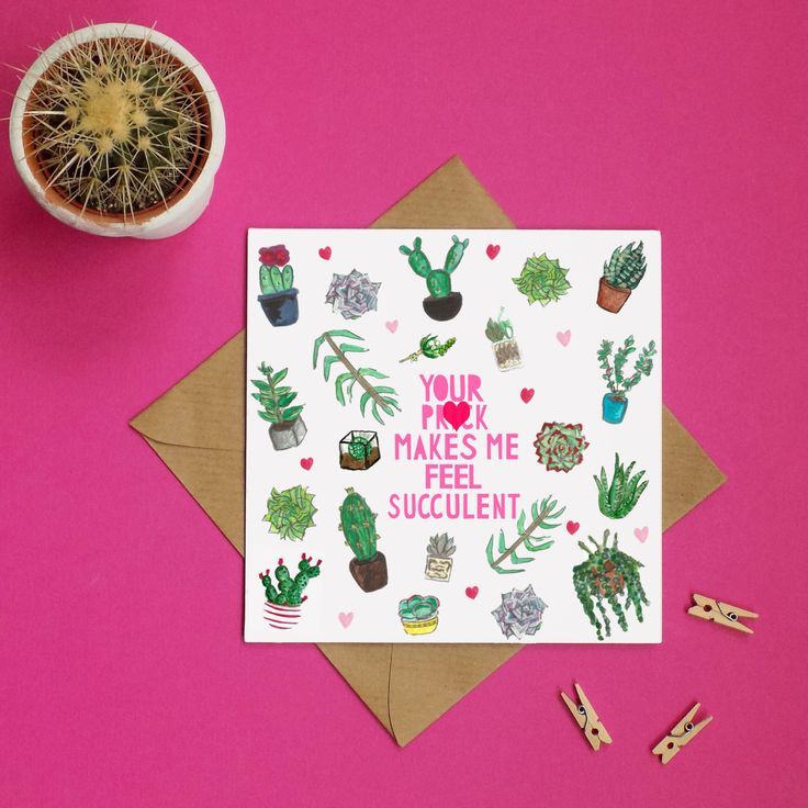 Rude Cactus Valentines Card, Rude Valentines Card, Cheeky Valentines Card, Succulent Card, Gay Valentine Card, Explicit Card, Naughty Card by MissBespokePapercuts on Etsy