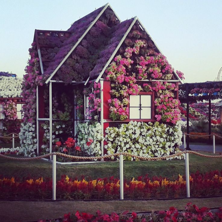 Miracle garden, Dubai.