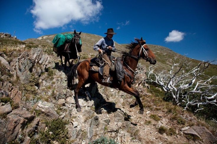 Where To Find Victoria's Best Horseback Adventures