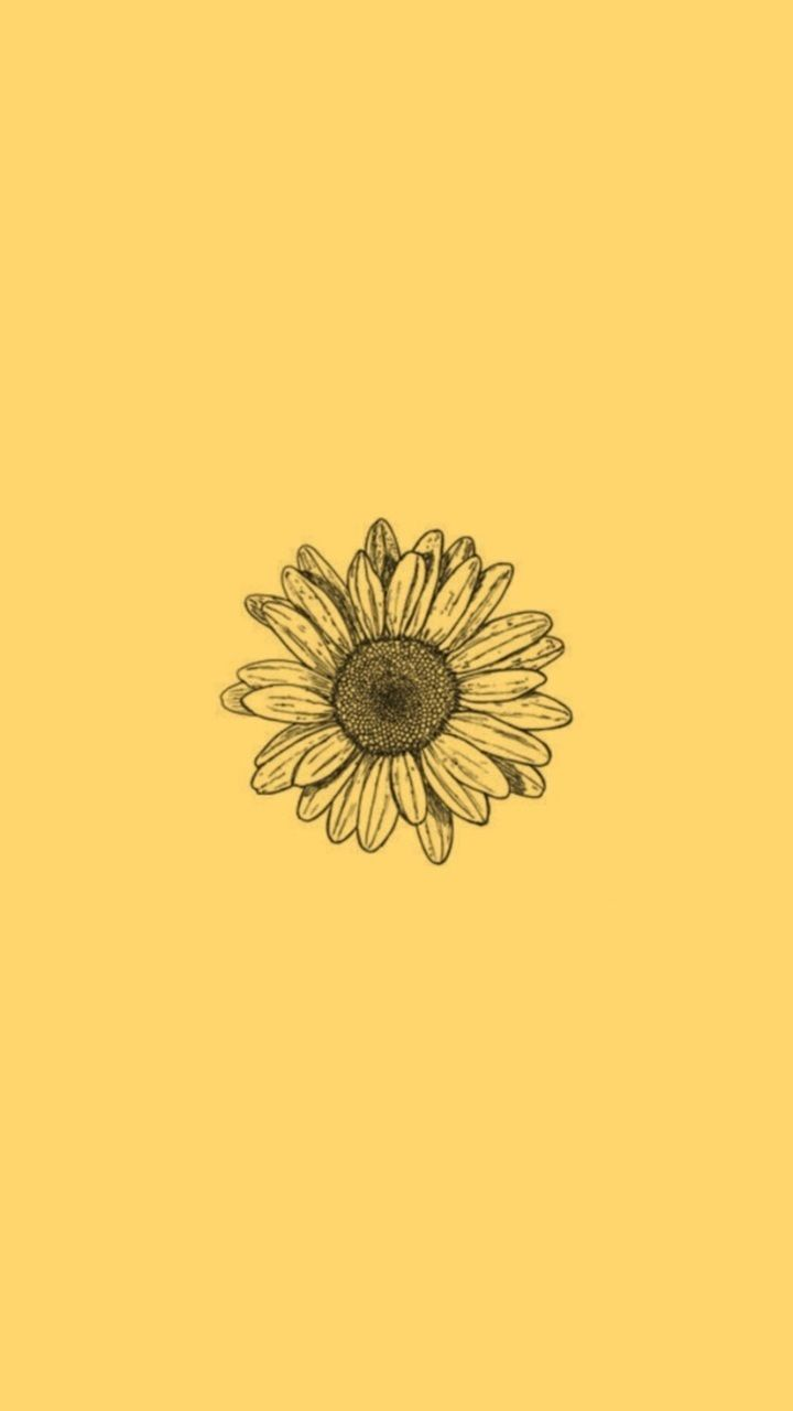 ᴡᴀʟʟᴘᴀᴘᴇʀs In 2020 Iphone Wallpaper Yellow Sunflower