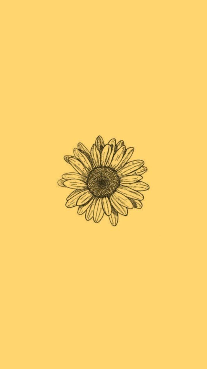 ᴡᴀʟʟᴘᴀᴘᴇʀs Iphone Wallpaper Yellow Yellow Aesthetic Pastel Sunflower Wallpaper