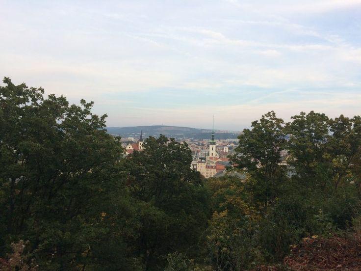 Exploring Brno