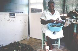 Louisiana Cooking: A Way of Life By Ulysses S. Ricard http://www.louisianafolklife.org/LT/Articles_Essays/creole_art_cooking_life.html