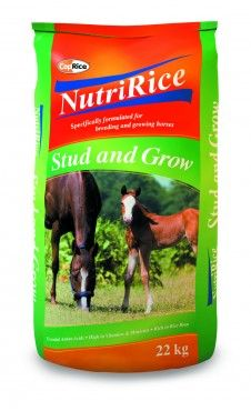 Coprice Nutririce Stud & Grow 22kg - For all young horses, breeding mares and stallions *High quality rice and rice bran promote proper skeletal development * Balanced vitamins and minerals for optimum fertility *Contains live yeast culture, which improves milk availability to foals