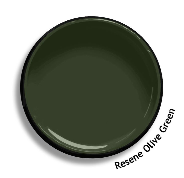 Resene Olive Green is a traditional yellow based green oxide that would work well in a bush setting. Goes well with native timber. From the Resene Heritage colours collection. Try a Resene testpot or view a physical sample at your Resene ColorShop or Reseller before making your final colour choice. www.resene.co.nz