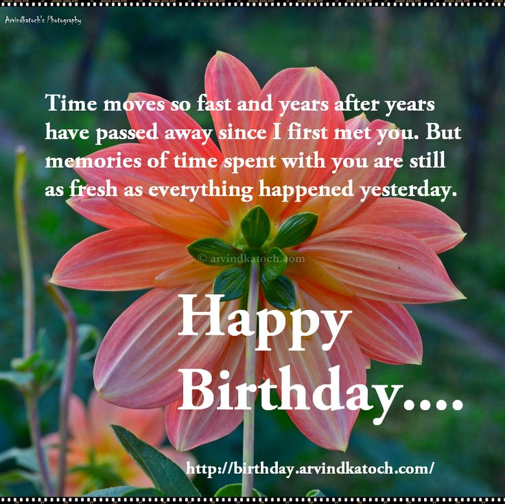 The 25 best Happy birthday old friend ideas – Friend Birthday Messages for Cards