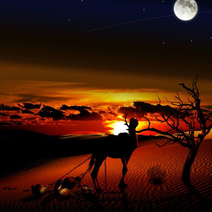 king of desert _ re del deserto