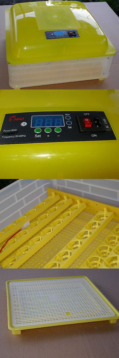 Incubators 46292: Automatic 48Eggs Digital Clear Egg Incubator Hatcher Turning Temperature Control BUY IT NOW ONLY: $90.0