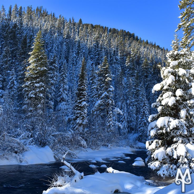 Snow for Christmas? You bet! Find out where Montanans play in the snow during Christmas break in southwest Montana. Photo: 'Winter On Hyalite Creek'