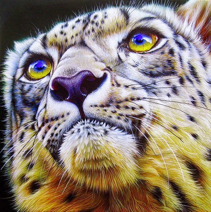 animales-flores-asombrosa-pintura-de-jurek-zamoyski_5.jpg (897×900)
