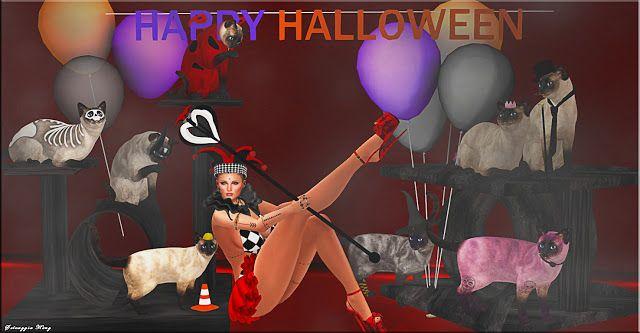 Style and Fashion Selvy: Lushish Catz1 :: LC :: Ladybug Siamese Cat RARE2 ...