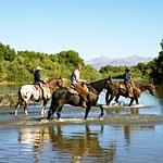 Dude ranch: Honeymoon Ideas, Trips, Horses, Travel Explore Places, Arizona Places Lifestyle, Colorado Vacation, Adventures Honeymoon, Date Ideas, Family Vacations