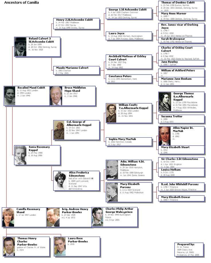 HD wallpapers template genealogy chart
