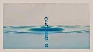 Η ΛΙΣΤΑ ΜΟΥ: Δες τι ζει μέσα σε μια σταγόνα θαλασσινού νερού σε...